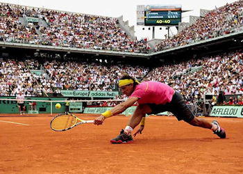 Nadal_display_image