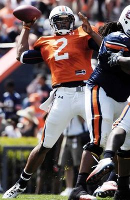 Cameron-newton-2562_display_image