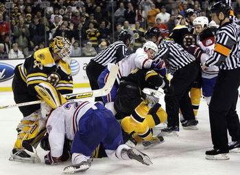 Habsbruinsfight_display_image