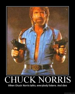 Chucknorris_display_image
