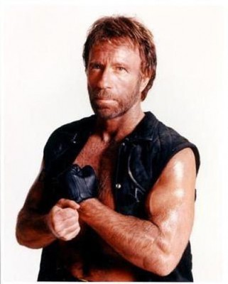 Chuck-norris-002-thumb-400x498-321x400_display_image
