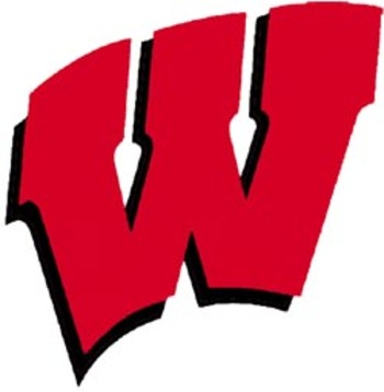Wisconsin_logo_display_image