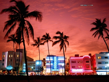 South_beach_neon_nightlife_display_image