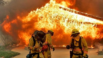 Wildfire-702922_display_image