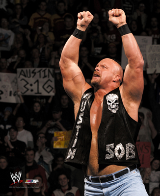 Steve-austin_display_image