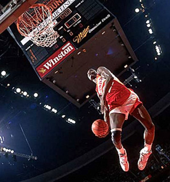 Dominiquewilkinsdunk2_display_image