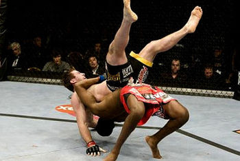 Ufc94-6_display_image