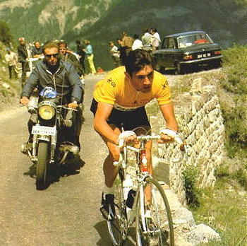 Merckx20large2_display_image