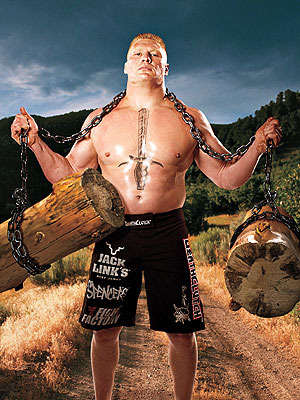 Brock_lesnar_logs_display_image