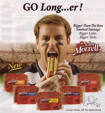 Sportsad-carsonpalmer_display_image