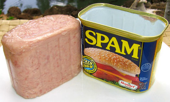 Spam_can_open_t520_display_image