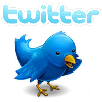Twitter-bird_display_image