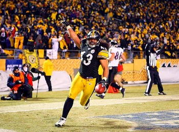 Troy-polamalu_display_image