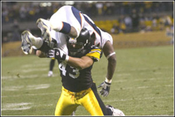 Troy_polamalu02_display_image
