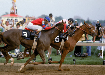 Alydar-affirmed_display_image