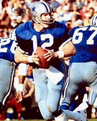 Staubach_display_image