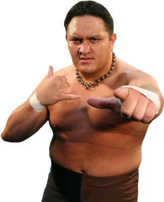 Samoajoe4_display_image
