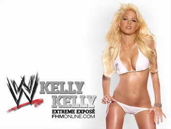Kelly-kelly-wwe-divas-4124829-1024-768_display_image
