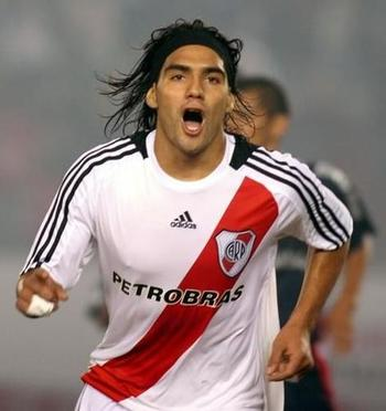 Falcao-garcia_display_image