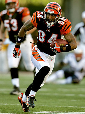 P1-tj-houshmandzadeh_display_image