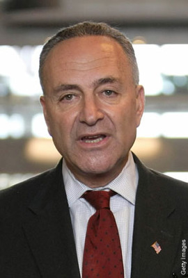Cschumer_display_image