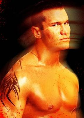 Randyorton3_display_image