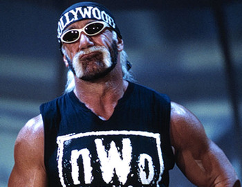 Hulk_hogan_3_display_image