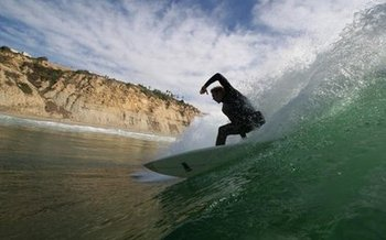 Blacks_surfer_display_image