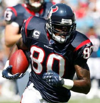 Andre_johnson_display_image
