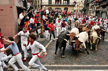 Running_of_the_bulls_display_image