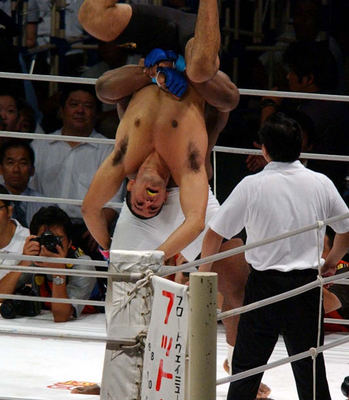Nogueira_vs_sapp_1_display_image