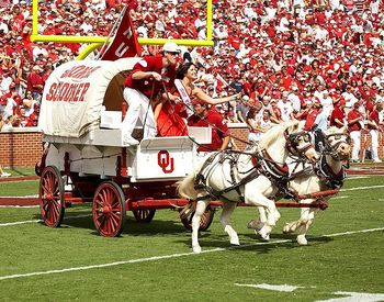 Sooner20schooner_display_image
