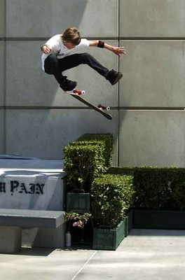 Ryansheckler_display_image