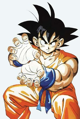 Goku-hame-kame-picture_display_image
