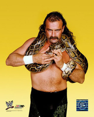 Jakethesnake_display_image
