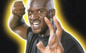 500x_shaq_fu_display_image