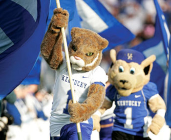 Wildcats_display_image