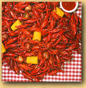 Crawfish_display_image