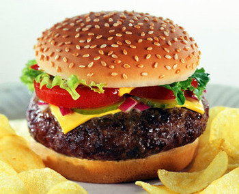Cheeseburger_display_image