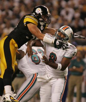 Nfl-steelers-dolphins_display_image