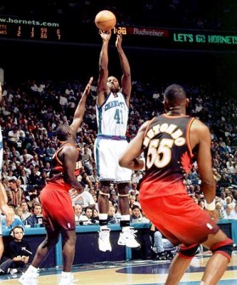 Glen_rice_display_image