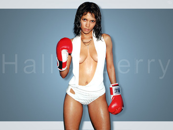Boxer_halle_berry_display_image