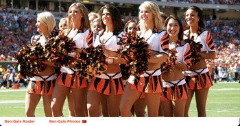 Bengals2_display_image