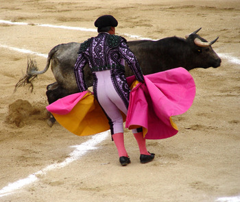 The-popular-matador-fighting-bull-in-plaza-de-toros-bullfight-arena-have-all-spectators-gasp-in-excitement-its-no-kidding-at-all_display_image