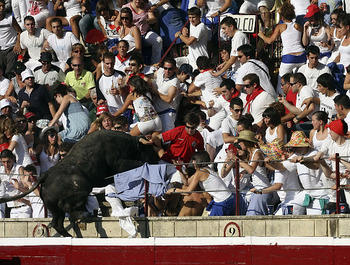 Alg_jumping_bull_display_image