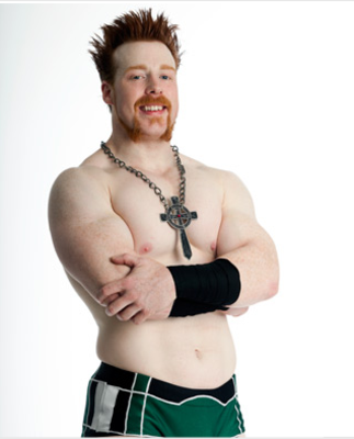 Sheamus_display_image