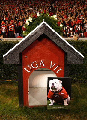 ATHENS, GA - NOVEMBER 21:  A wreath lay on top of the doghouse in honor of UGA VII before the game between the Georgia Bulldogs and the Kentucky Wildcats at Sanford Stadium on November 21, 2009 in Athens, Georgia.  (Photo by Kevin C. Cox/Getty Images)