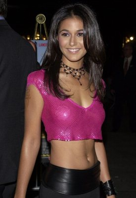 Emmanuelle-chriqui_display_image