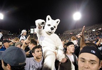 Uconnhusky_display_image