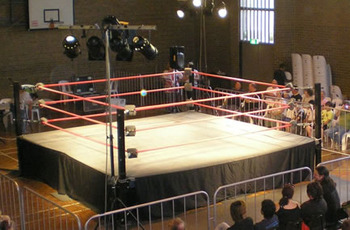 Wrestlingring_display_image
